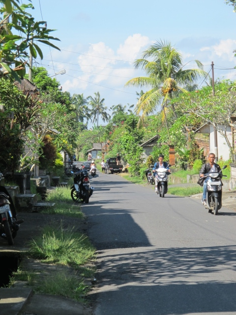 Getting around Ubud